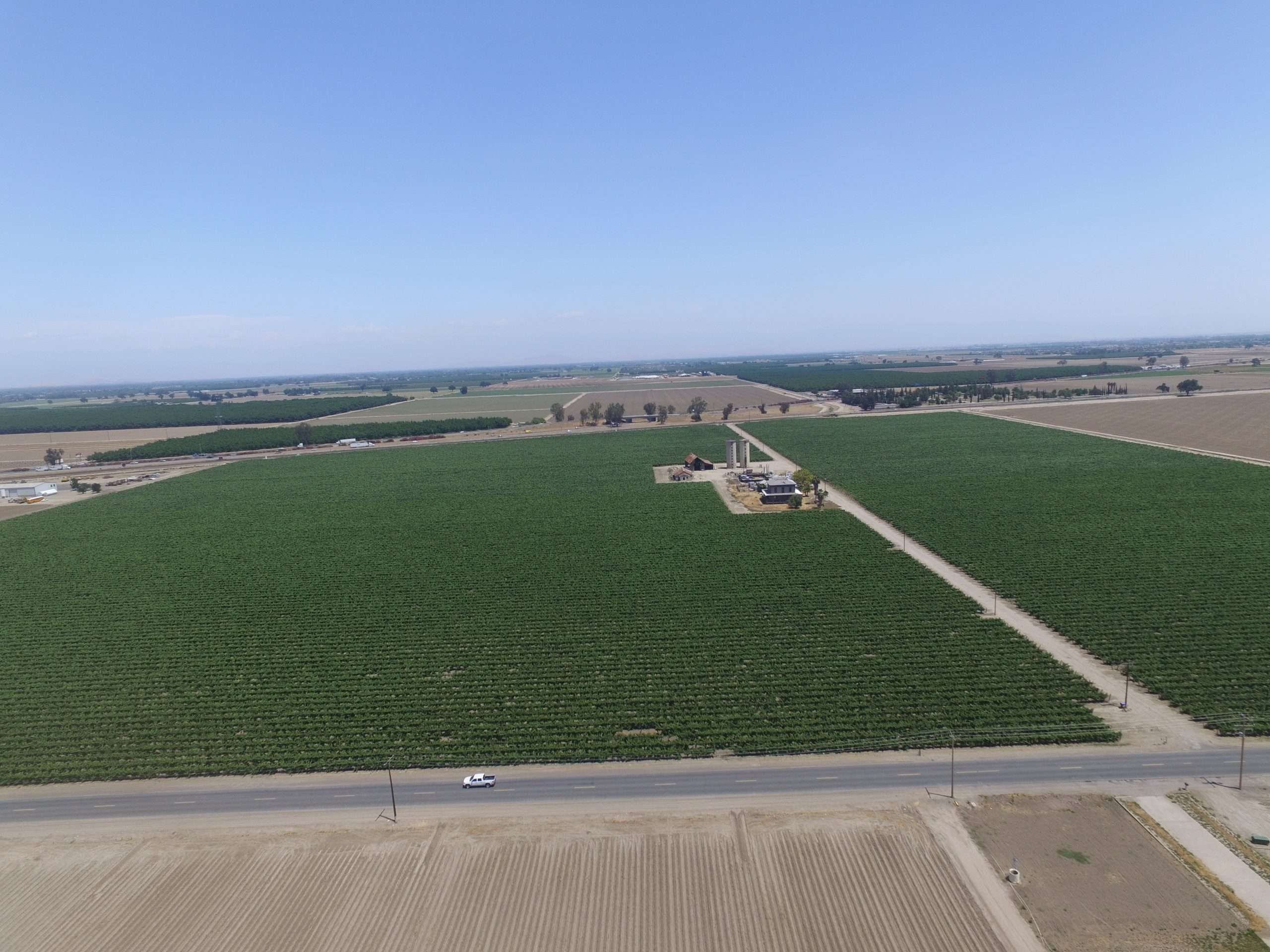111.17 Acres: Freeway 99 Frontage Vineyard, Tulare