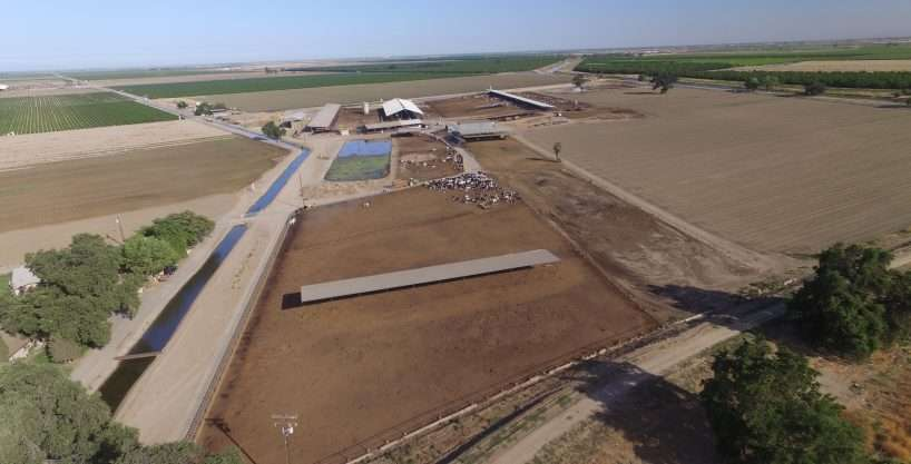 201 Acre Dairy, North Visalia – Price Reduced