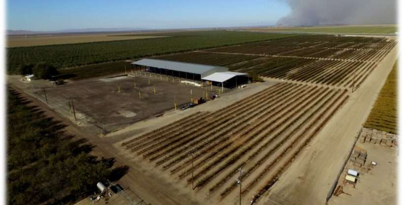 2,490.89 Acres Almonds, Grapes, Blueberries and Row Crops