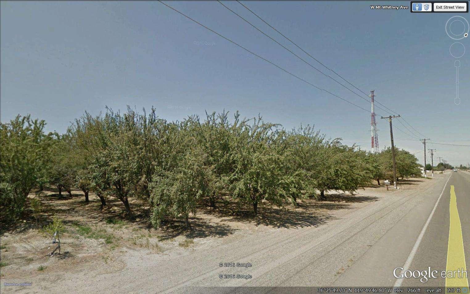 40 Acres Almonds, Riverdale