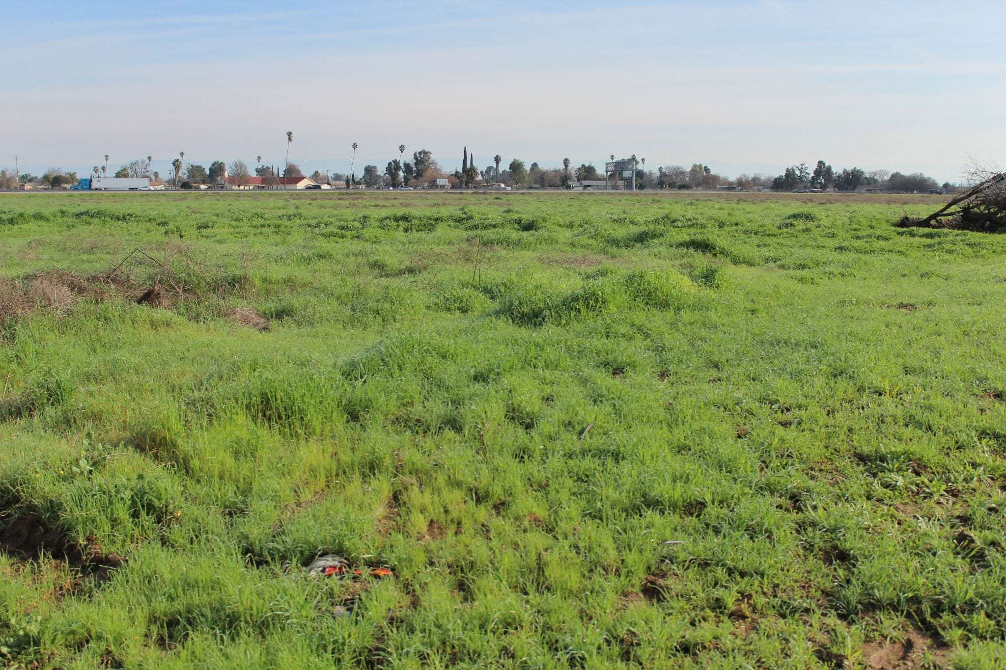 13.95 Acres Open Land, Chowchilla