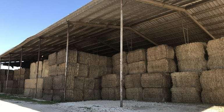 Goldthwaite Dairy Hay Barn