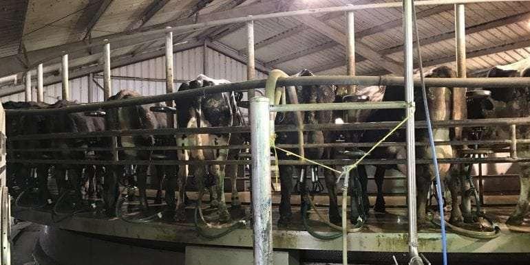Goldthwaite Dairy Milk Parlor
