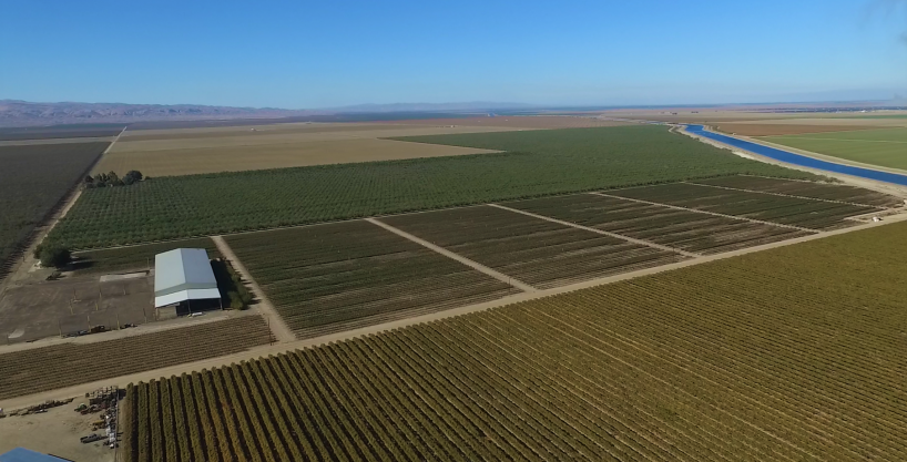 660.54 Acres Almonds, Blueberries & Open, Cantua Creek