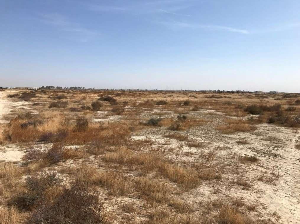 39.69 Acres Open Land, Delano