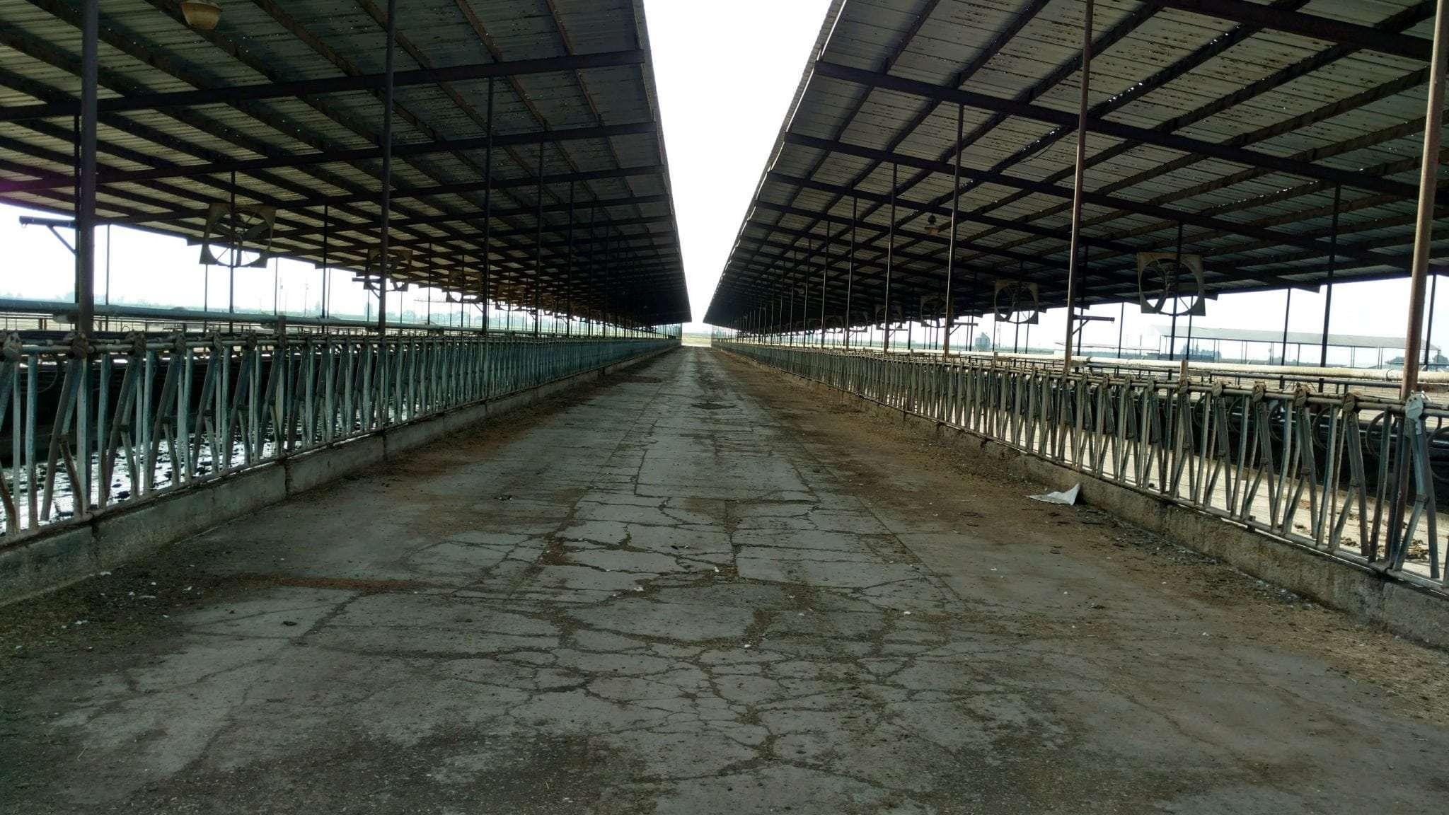 194.05 Ac. Dairy & Land, Dinuba