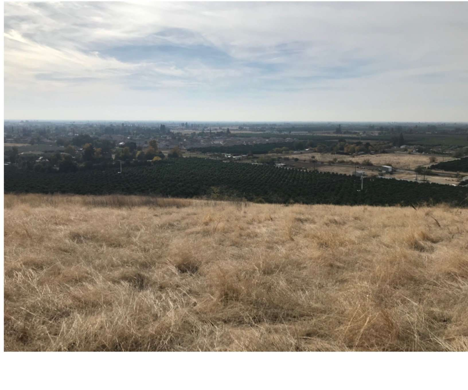 11.82 Acres with Hilltop Lots, Lindsay