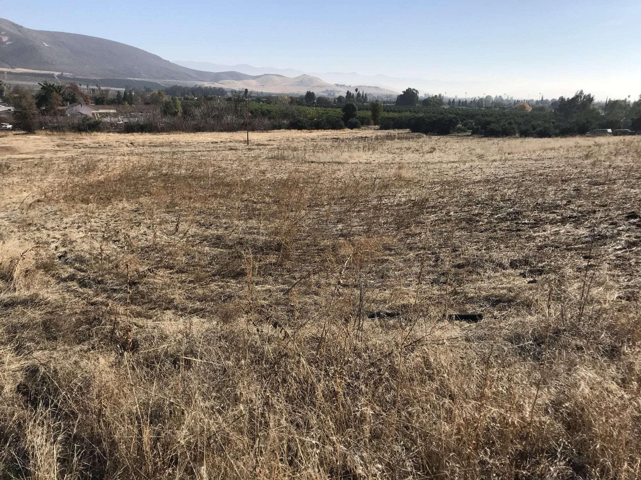 7 Acres Open Land, Lindsay
