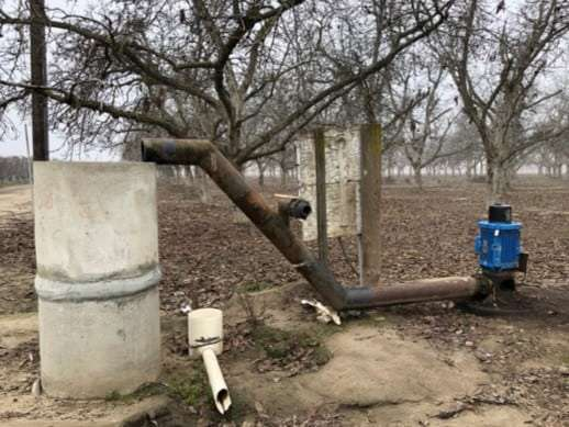 45 Acres Walnuts, Visalia