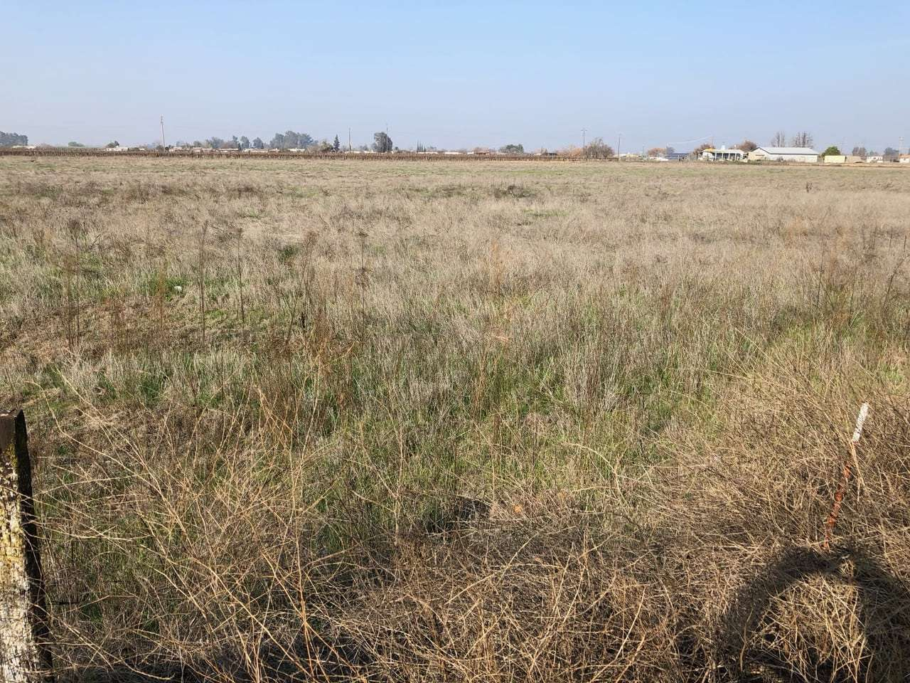 16.96 Acres Open Land, Reedley