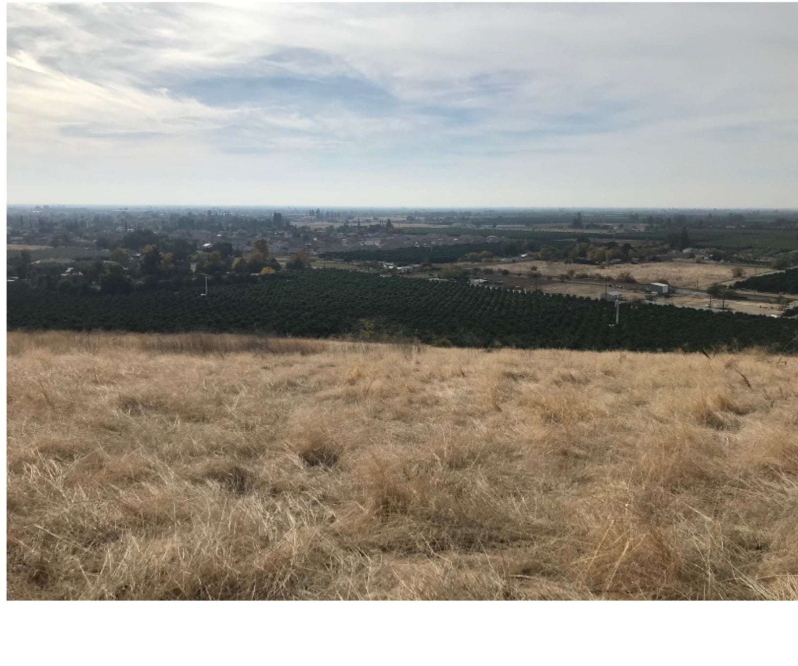 9.89 Ac. Todd's Hill, Lindsay