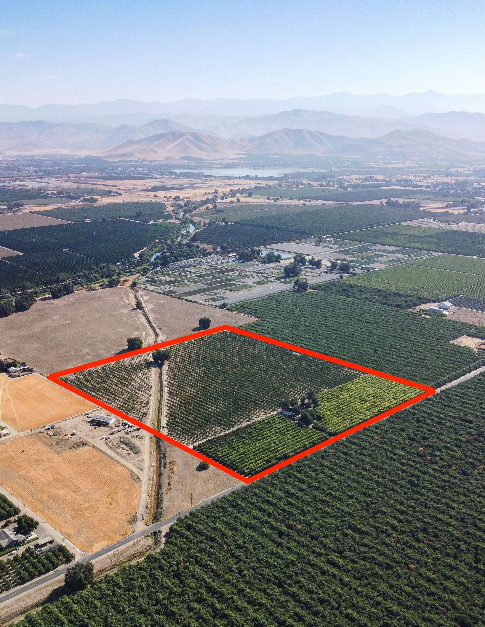 +/-28 Acres Almonds & Persimmons – Woodlake, CA