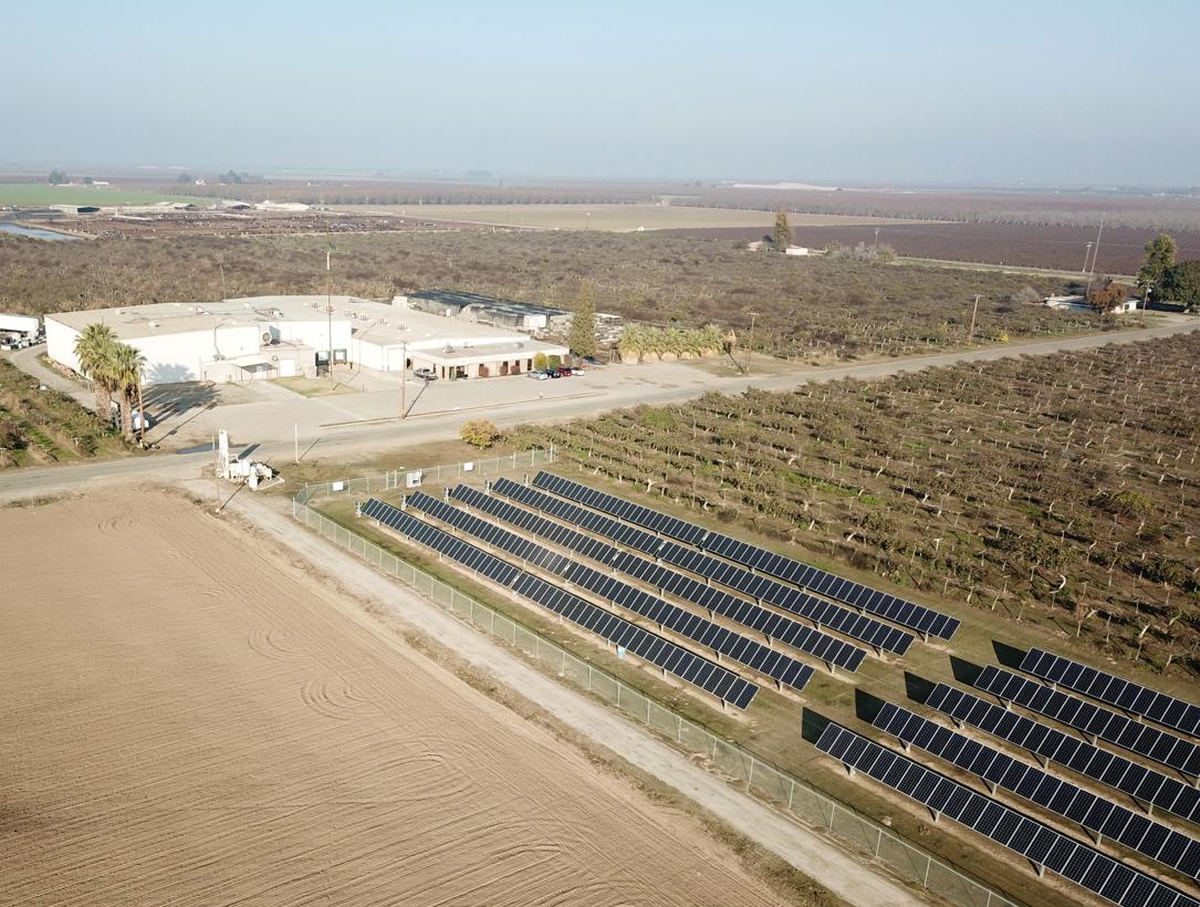 70 Ac. Kiwi, Solar, Packing & Cold Storage