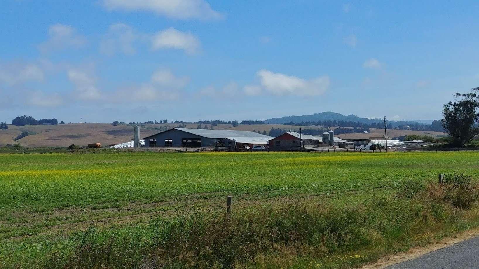 Organic O'Neil Dairy, Livestock & Land, Loleta, CA