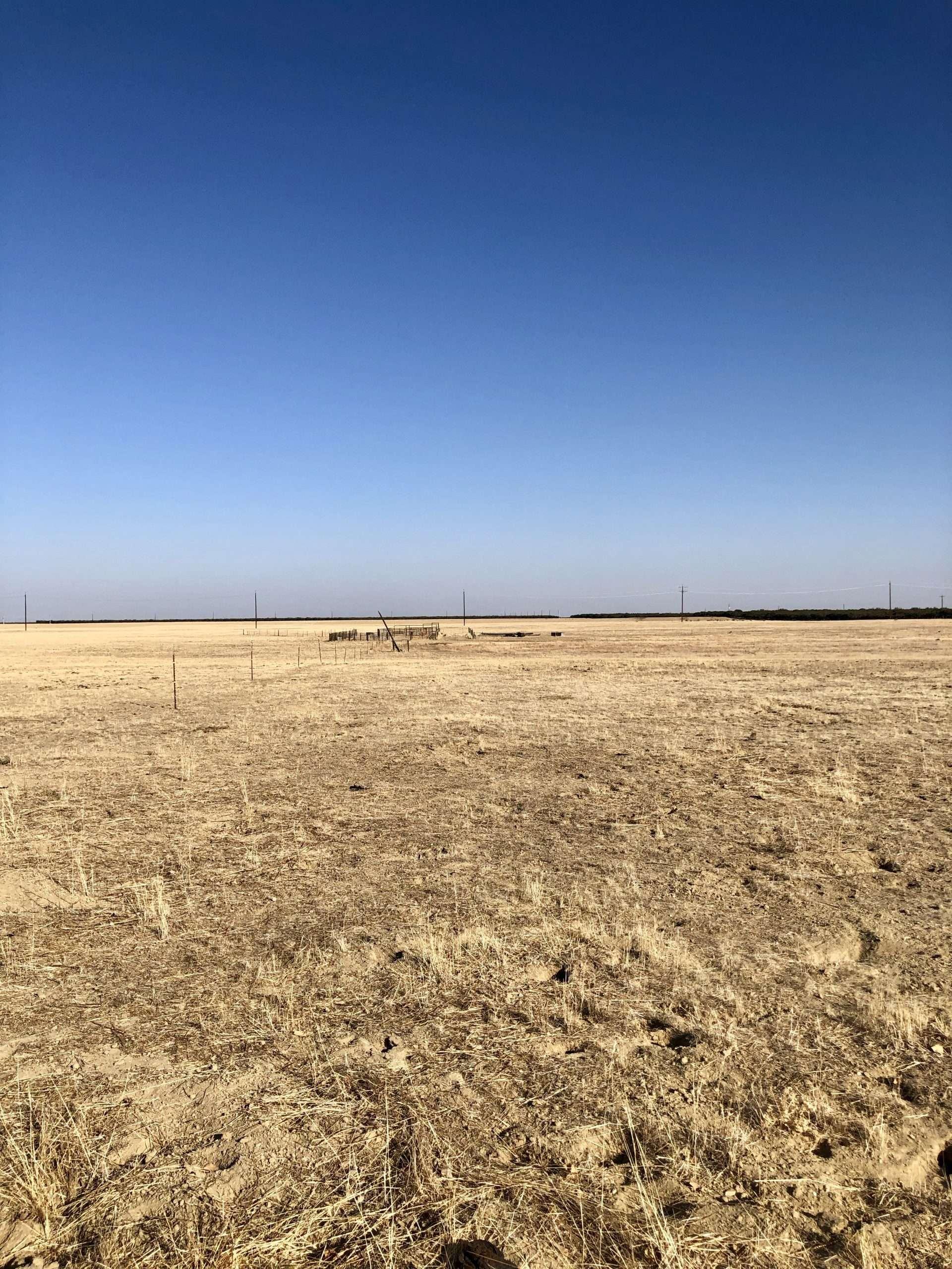 125 Acres Lost Hills Open Ground