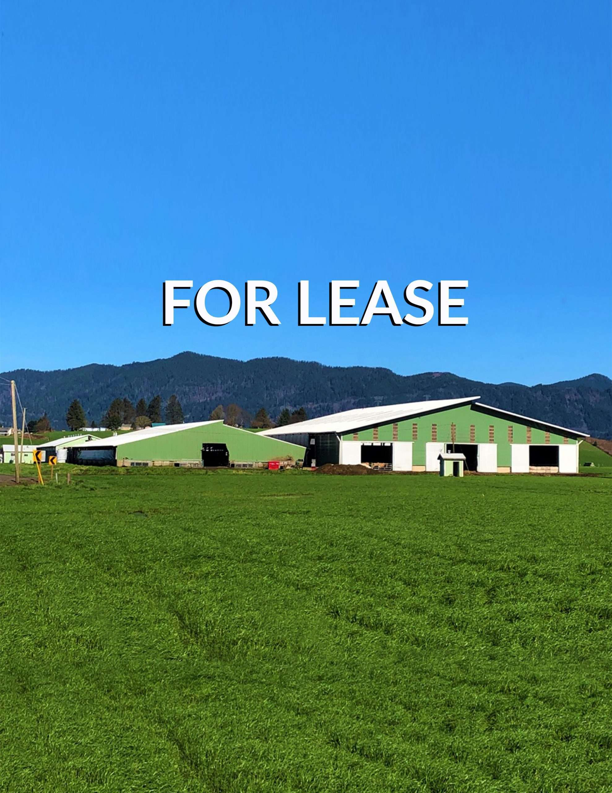 FOR LEASE! +/-120 Acre Dairy