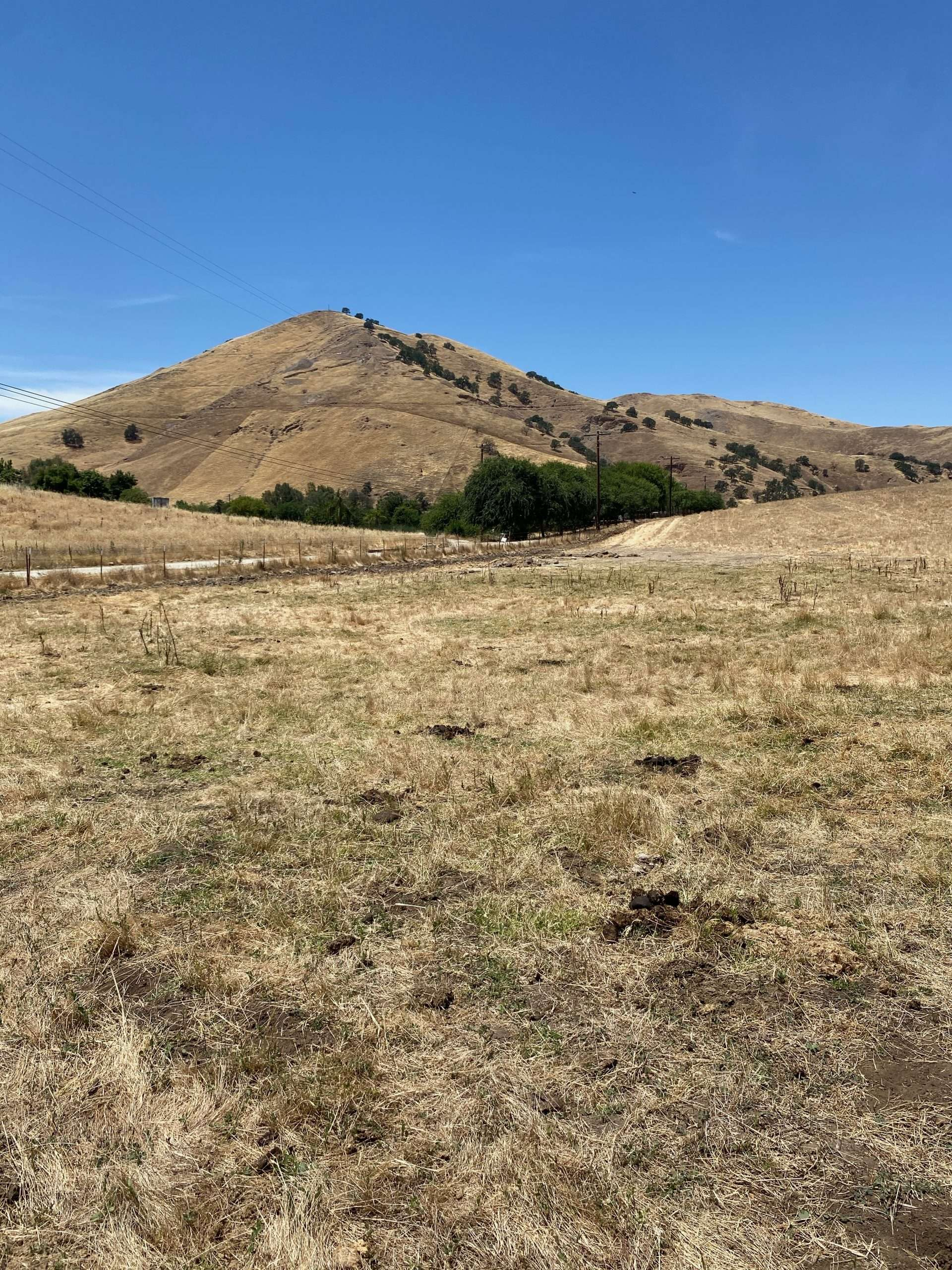 19.91 Ac. Open Ground – Porterville, CA