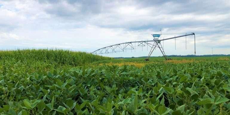 Farm Pivot (2)