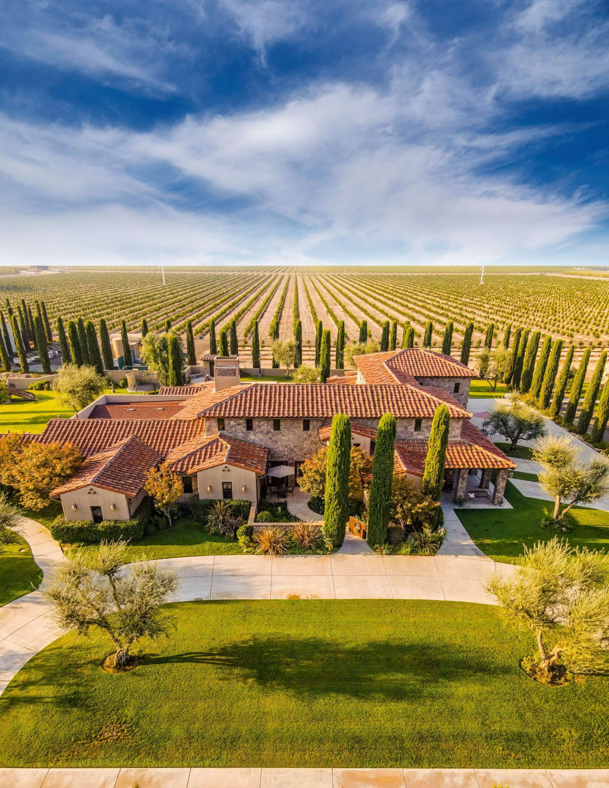 54.4 Acre Citrus Orchard Estate