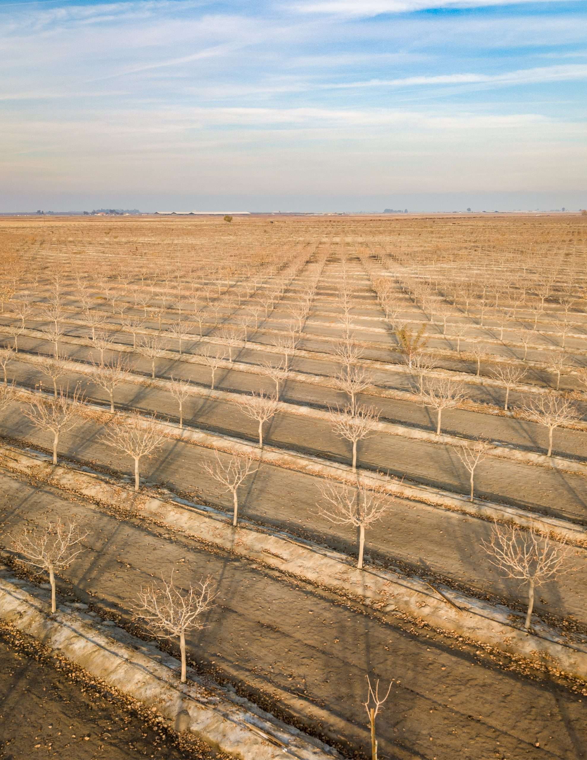 +/-1,840 Acres – Pistachios – Hanford, CA