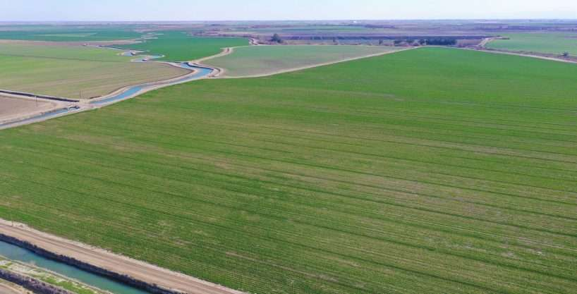 +/-537.2 Acres – Row Crops – Merced County, CA