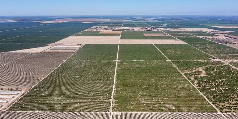 +--333 acres almonds - Doug-3