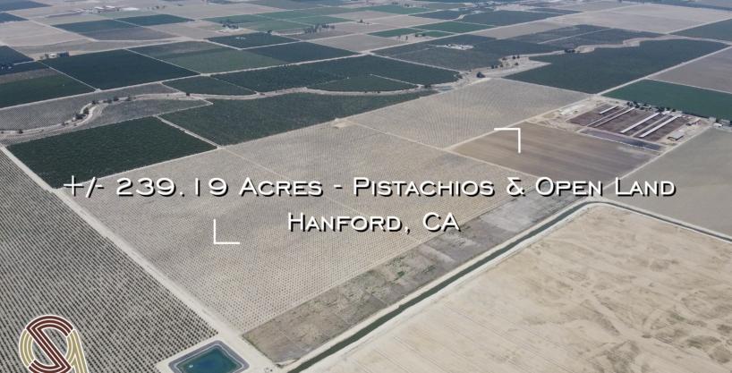 +/-239.19 Acres – Pistachios & Open Land – Hanford, CA