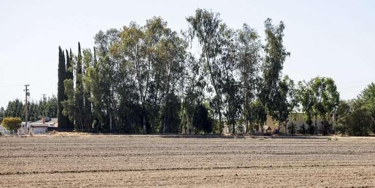 Skaff 18 Acres Visalia well and ground-6