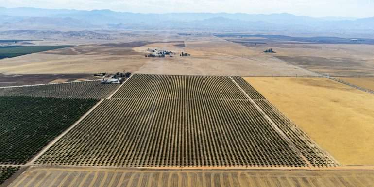 280 Acres - Pistachios and Open Ground - Ducor-25
