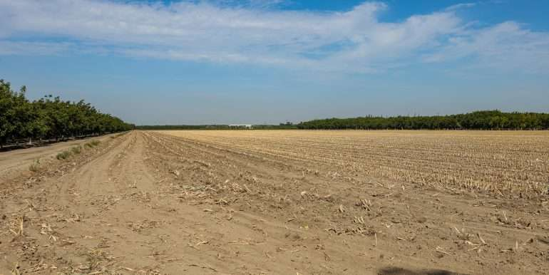 +--39 Acres Open Land Visalia-1