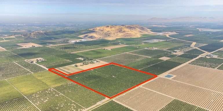 Ben's +--40.79 acres - Citrus - Dinuba-5