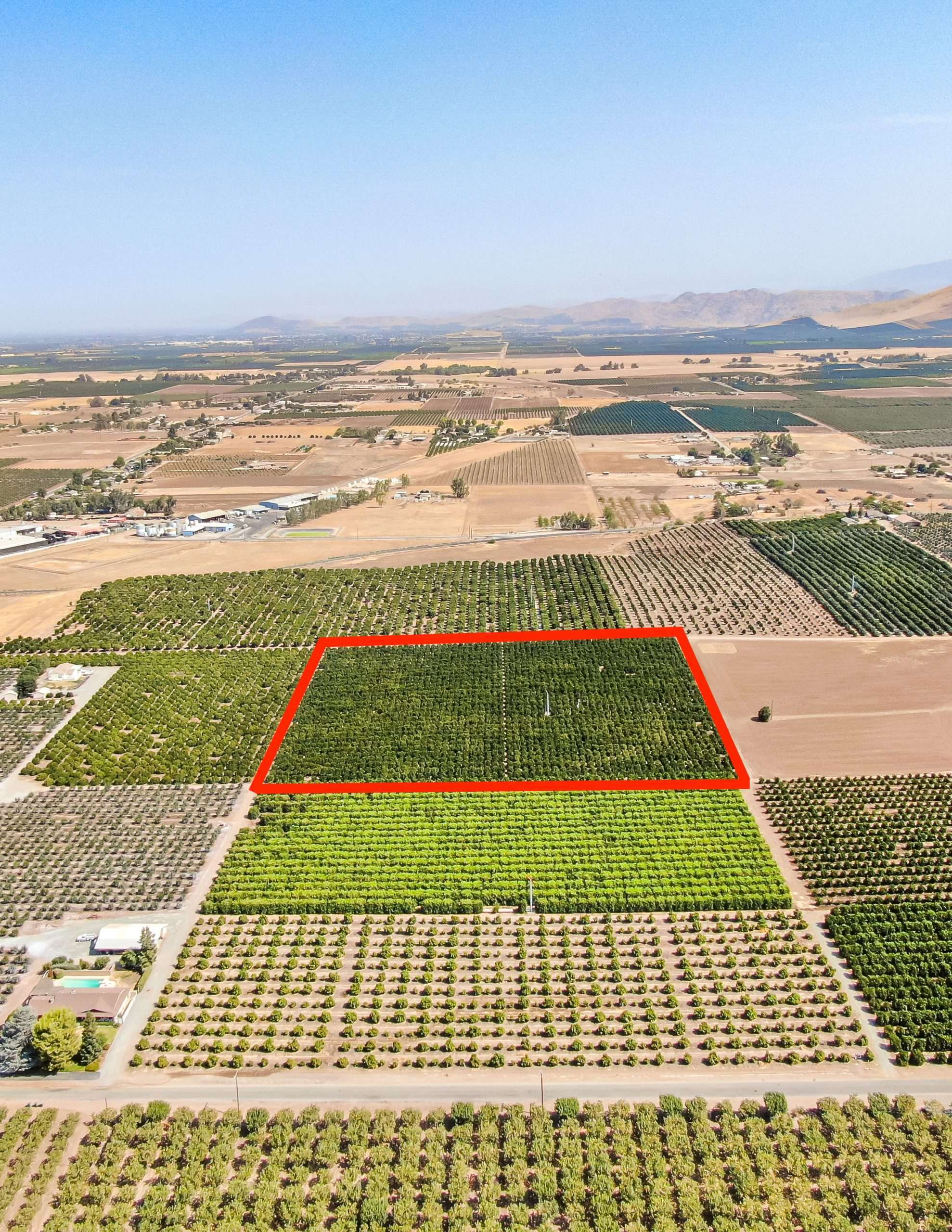 +/-10 Acres – Citrus – Terra Bella, CA
