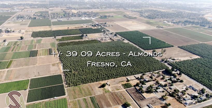 +/-39.09 Acres – Almonds – Fresno, CA