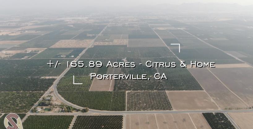 +/-165.89 Acres – Citrus & Home – Porterville, CA