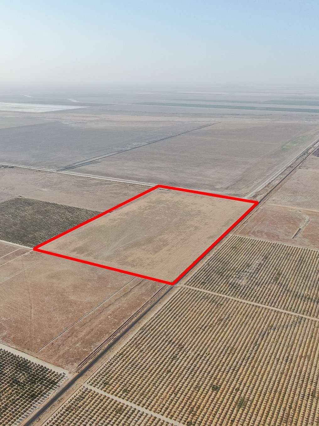 +/- 80 Acres – Open Ground – Alpaugh, CA