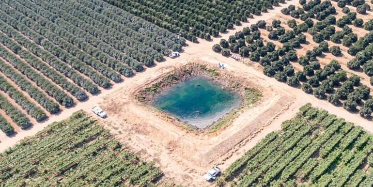 80 acres organic-4