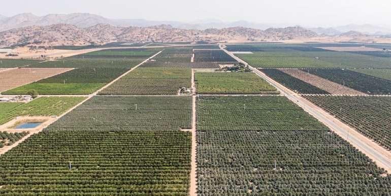 80 acres organic-9