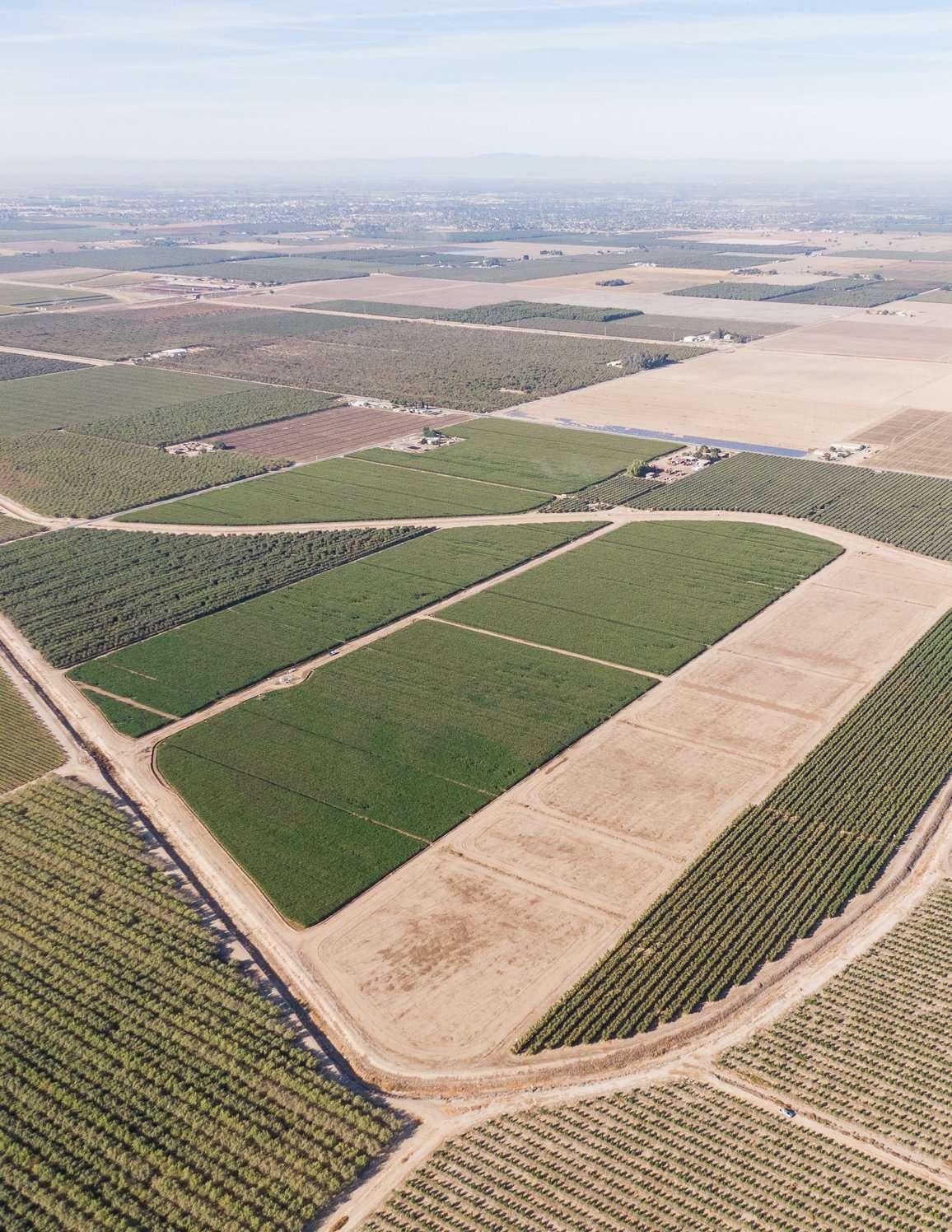+/-182.50 Acres – Quality Farm Ground – Hanford, CA